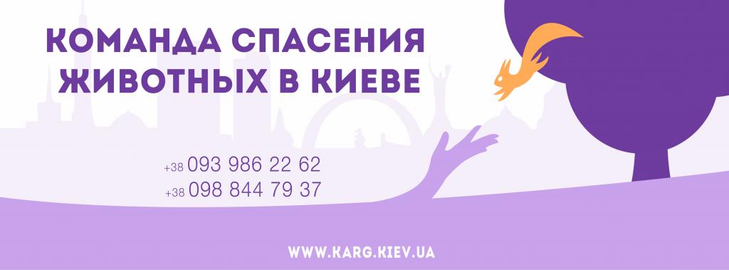 KARG итоги 2014 года