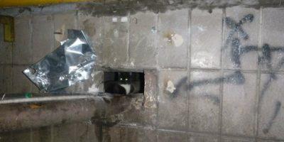 Спасение котят, замурованных в подвале