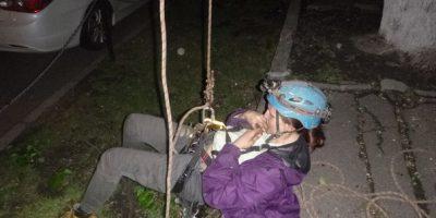 Снятие котенка с дерева