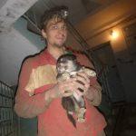 Спасение щенят в лабиринтах