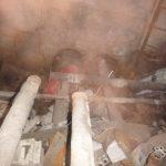 Спасение щенков в трубе теплотрассы